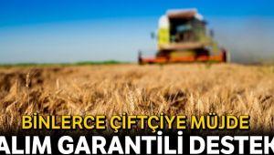 8 bin çiftçiye alım garantili destek