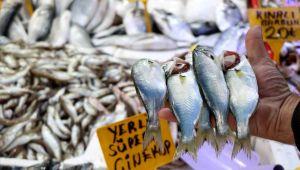 Havalar bozdu Karadeniz'de 'çinekop' patlaması yaşandı